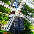 Windmill At Hofstra by Dora Sofia Caputo Photographic Design and Fine Art