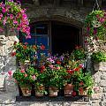 Window Dressing by Michael Blanchette