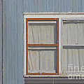 Windows by Jim Wright