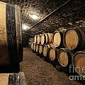 Wine Barrels In A Cellar. Cote D'or. Burgundy. France. Europe by Bernard Jaubert
