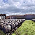 Winery Wine Barrels Outside Clouds Panorama by David Zanzinger