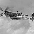 Wing Commander Johnnie Johnson by J Biggadike