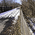 Winter On Macomb Orchard Trail by LeeAnn McLaneGoetz McLaneGoetzStudioLLCcom