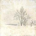 Winter On The Farm by Pamela Baker