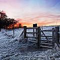 Winter Sunrise by Graham Custance