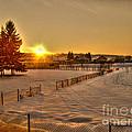 Winter Sunset by Nina Ficur Feenan