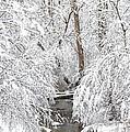 Winter Wonderland by Benanne Stiens