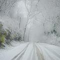 Winter Wonderland by Bill Cannon