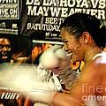 Woman's Boxing Champion Filipino American Ana Julaton by Jim Fitzpatrick