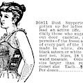 Women's Fashion, 1895 by Granger