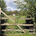 Wooden Gate Sussex Uk by Julia Gavin