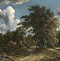 Woodland Road by Meindert Hobbema