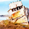 Wreck Of The Point Reyes Boat In Inverness Point Reyes California Dsc2079wc by Wingsdomain Art and Photography