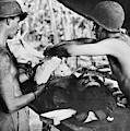 Wwii New Guinea, C1943 by Granger