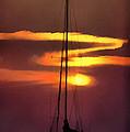 Yacht At Sunset by Roy Pedersen