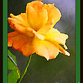 Yellow Rose Of Texas by Donna Bentley