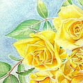 Yellow Roses by Bill Richards