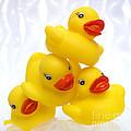 Yelow Ducks by Bernard Jaubert