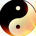 Yin And Yang 3 by Roz Abellera