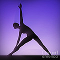 Yoga Triangle Pose by Science Picture Co