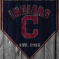 Cleveland Indians by Joe Hamilton