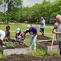 Community Gardening by Jim West