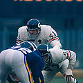 Dick Butkus by Retro Images Archive