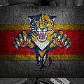 Florida Panthers by Joe Hamilton