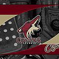 Phoenix Coyotes by Joe Hamilton