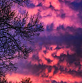 Red Sky At Morning by Thomas R Fletcher