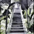 Staircase Leading To A Higher Level In Siloso Hotel In Sentosa by Ashish Agarwal