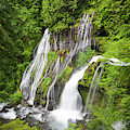 Wa, Gifford Pinchot National Forest by Jamie and Judy Wild
