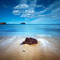 Bass Rock by Keith Thorburn LRPS EFIAP CPAGB