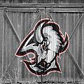 Buffalo Sabres by Joe Hamilton
