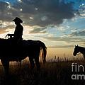 Cowboys by John Shaw