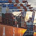 Hamburg Harbor Container Terminal by Jannis Werner