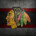 Chicago Blackhawks by Joe Hamilton