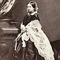 Queen Victoria (1819-1901) by Granger