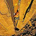 Climber by Elijah Weber