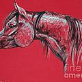 Arabian Horse  by Angel  Tarantella