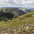 Engineer Pass In Colorado  by Brett Pfister