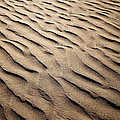 Sand Dunes by Kati Finell