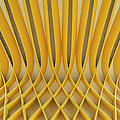 Study Of Patterns And Lines by Roland Shainidze Photogaphy