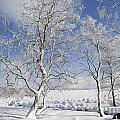 130201p335 by Arterra Picture Library
