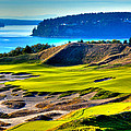 #14 At Chambers Bay Golf Course - Location Of The 2015 U.s. Open Tournament by David Patterson