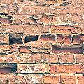 Brick Wall by Tom Gowanlock