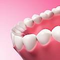 Human Teeth by Sebastian Kaulitzki
