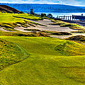 #16 At Chambers Bay Golf Course - Location Of The 2015 U.s. Open Championship by David Patterson