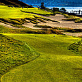 #16 At Chambers Bay Golf Course - Location Of The 2015 U.s. Open Tournament by David Patterson