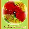 La Fleur De Mon Coeur by Meiers Daniel